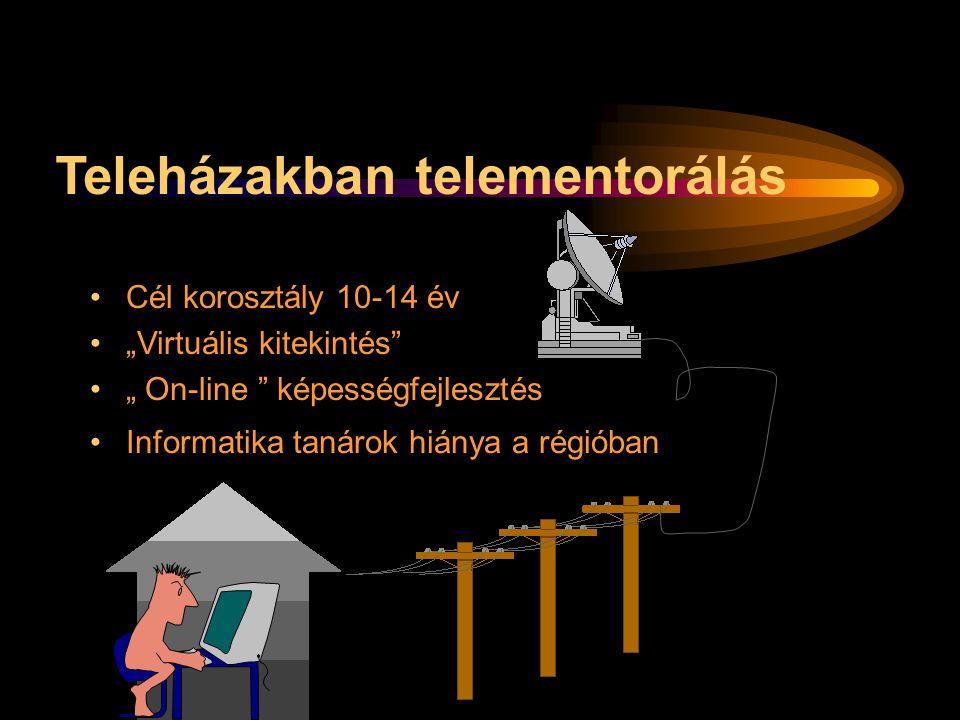 """Teleházakban telementorálás Cél korosztály 10-14 év """"Virtuális kitekintés"""" """" On-line """" képességfejlesztés Informatika tanárok hiánya a régióban"""