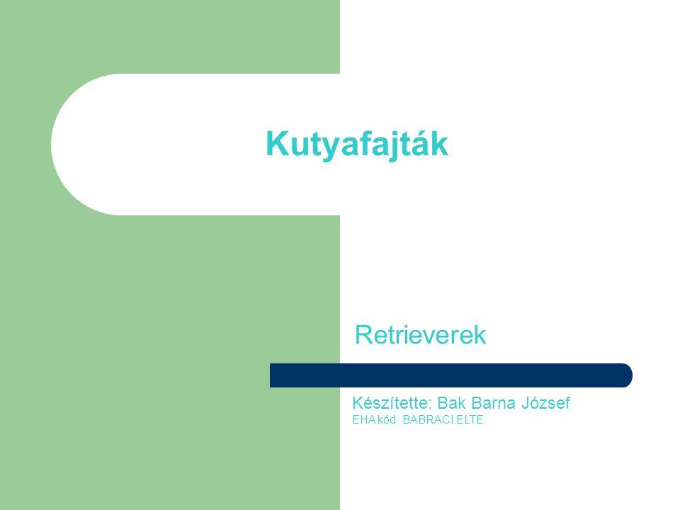 Kutyafajták Retrieverek Készítette: Bak Barna József EHA kód: BABRACI.ELTE