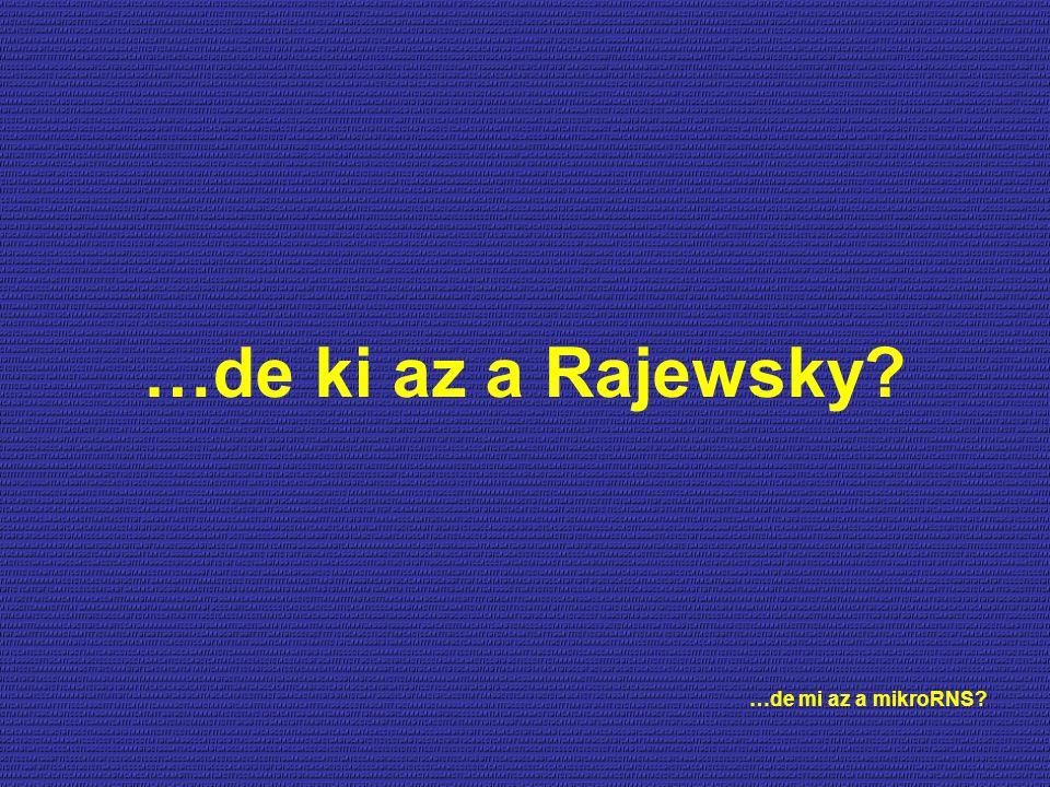 …de ki az a Rajewsky? …de mi az a mikroRNS?