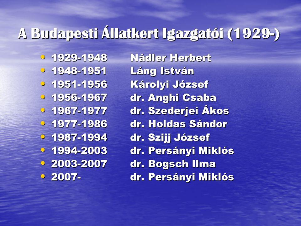 1929-1948Nádler Herbert 1929-1948Nádler Herbert 1948-1951Láng István 1948-1951Láng István 1951-1956Károlyi József 1951-1956Károlyi József 1956-1967dr.