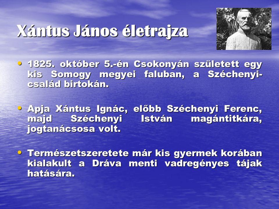 Xántus János életrajza 1825. október 5.-én Csokonyán született egy kis Somogy megyei faluban, a Széchenyi- család birtokán. 1825. október 5.-én Csokon