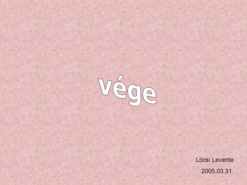 Lócsi Levente 2005.03.31.