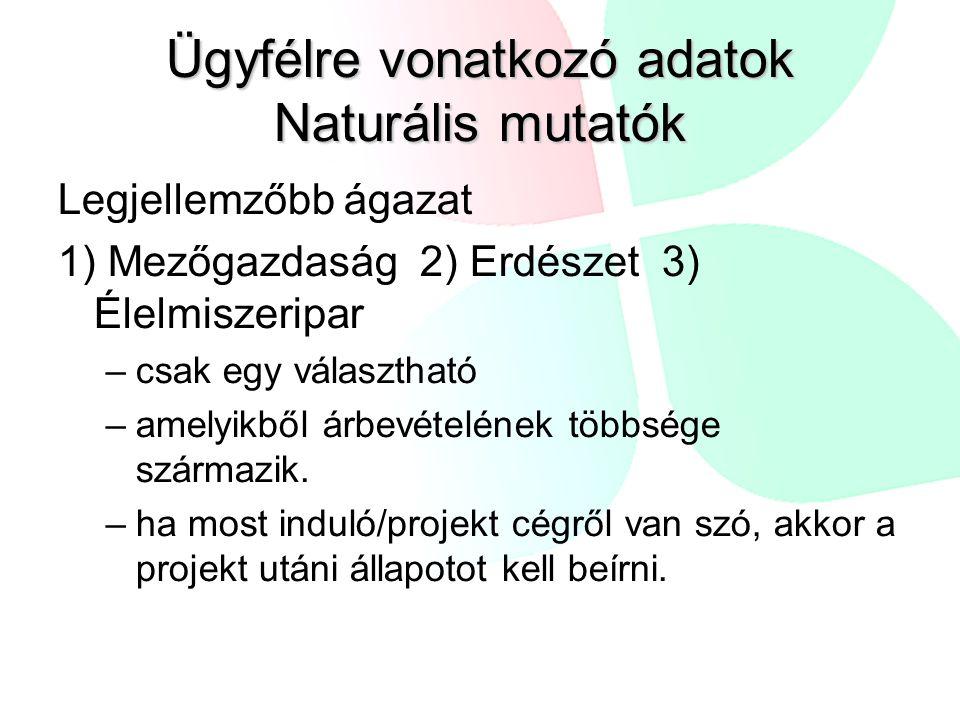 Ügyfélre vonatkozó adatok Naturális mutatók Legjellemzőbb ágazat 1) Mezőgazdaság 2) Erdészet 3) Élelmiszeripar –csak egy választható –amelyikből árbev