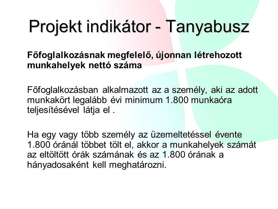 Projekt indikátor - Tanyabusz Főfoglalkozásnak megfelelő, újonnan létrehozott munkahelyek nettó száma Főfoglalkozásban alkalmazott az a személy, aki a