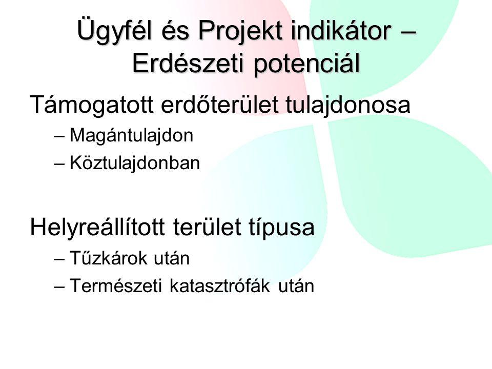 Ügyfél és Projekt indikátor – Erdészeti potenciál Támogatott erdőterület tulajdonosa –Magántulajdon –Köztulajdonban Helyreállított terület típusa –Tűz