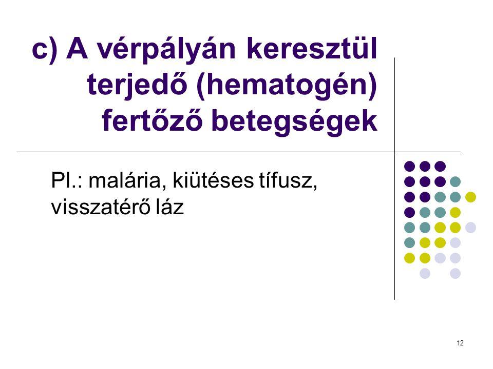 12 c) A vérpályán keresztül terjedő (hematogén) fertőző betegségek Pl.: malária, kiütéses tífusz, visszatérő láz