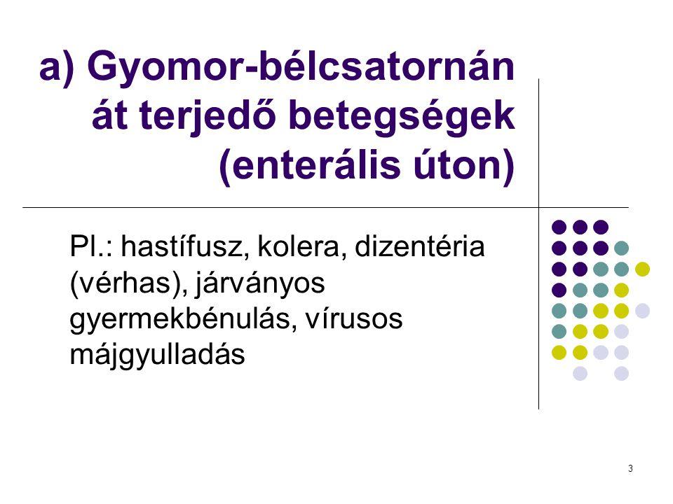 3 a) Gyomor-bélcsatornán át terjedő betegségek (enterális úton) Pl.: hastífusz, kolera, dizentéria (vérhas), járványos gyermekbénulás, vírusos májgyul