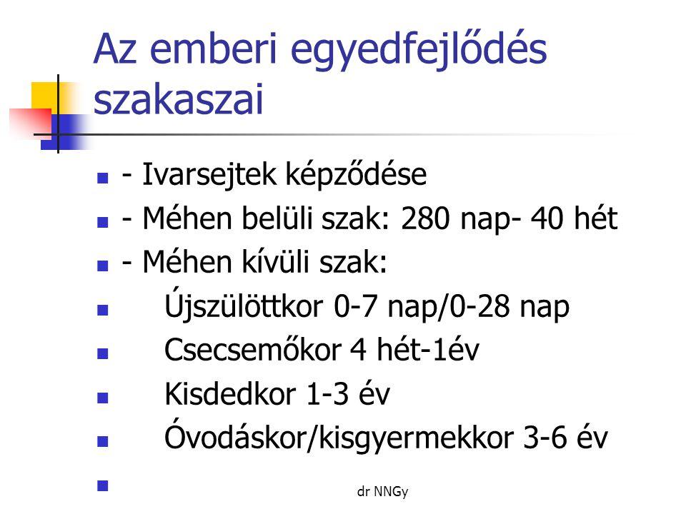 Az emberi egyedfejlődés szakaszai - Iskoláskor 6-14 év - Serdülőkor ~10-21 év pubertáskor ~11-16 év - Felnőtt kor 20-21 év felett - Időskor nő:55-74 év férfi 60-74 év - Aggkor 75- 90 év - Matuzsálemi kor 90 év felett dr NNGy