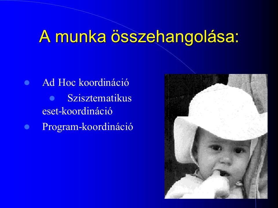 7 A munka összehangolása: Ad Hoc koordináció Szisztematikus eset-koordináció Program-koordináció