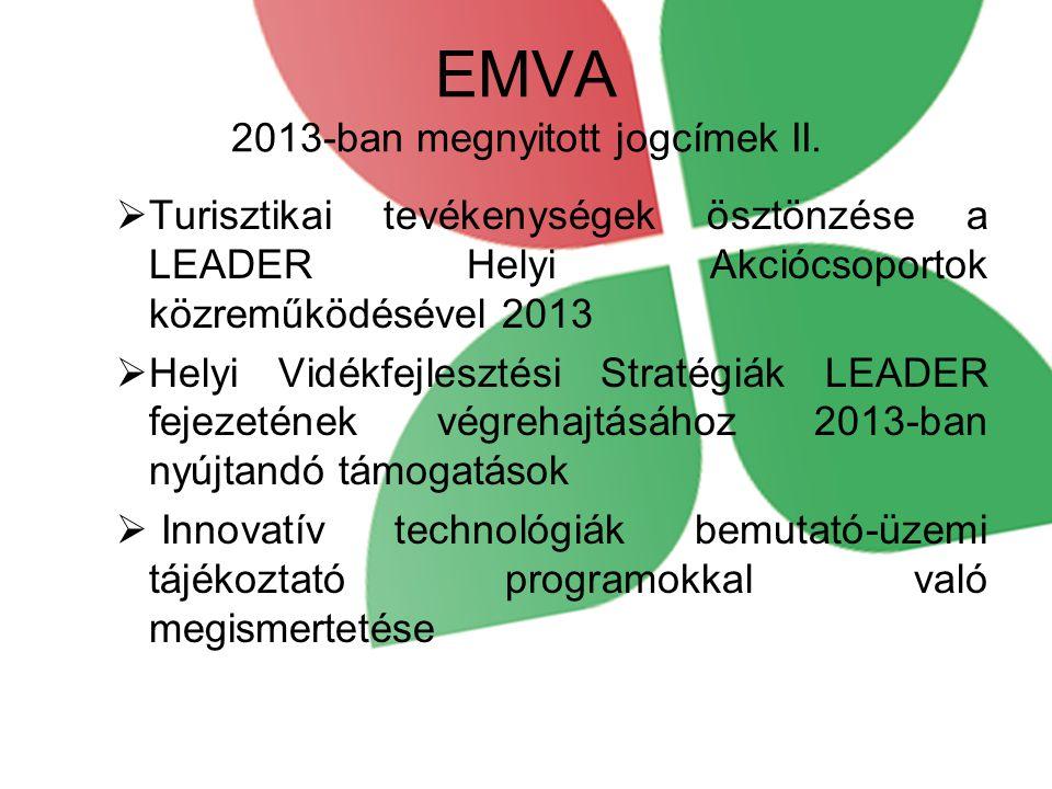 EMVA 2013-ban megnyitott jogcímek II.  Turisztikai tevékenységek ösztönzése a LEADER Helyi Akciócsoportok közreműködésével 2013  Helyi Vidékfejleszt