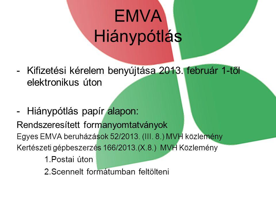 EMVA Hiánypótlás -Kifizetési kérelem benyújtása 2013. február 1-től elektronikus úton -Hiánypótlás papír alapon: Rendszeresített formanyomtatványok Eg