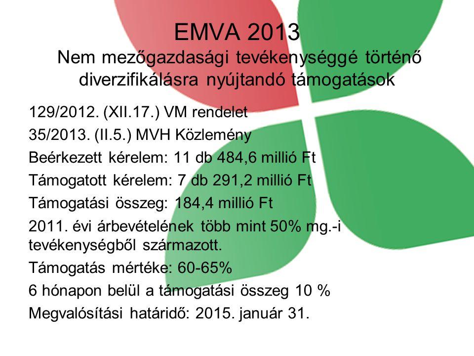 EMVA 2013 Nem mezőgazdasági tevékenységgé történő diverzifikálásra nyújtandó támogatások 129/2012. (XII.17.) VM rendelet 35/2013. (II.5.) MVH Közlemén