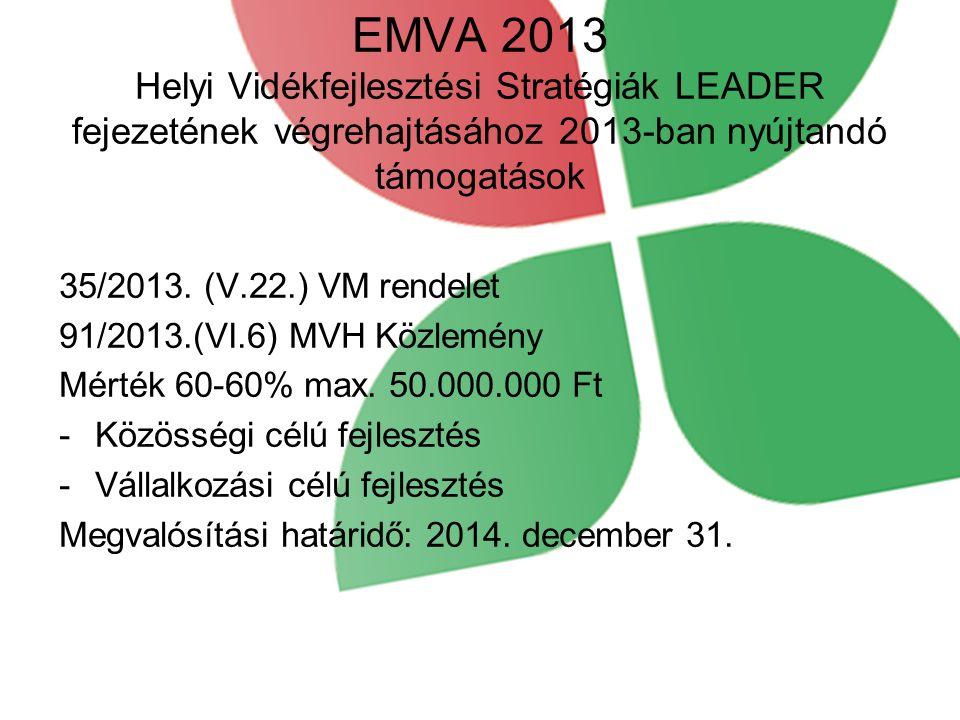 EMVA 2013 Helyi Vidékfejlesztési Stratégiák LEADER fejezetének végrehajtásához 2013-ban nyújtandó támogatások 35/2013. (V.22.) VM rendelet 91/2013.(VI
