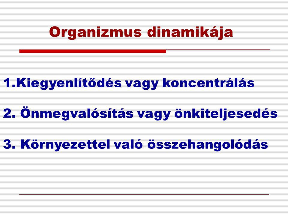 Organizmus dinamikája 1.Kiegyenlítődés vagy koncentrálás 2. Önmegvalósítás vagy önkiteljesedés 3. Környezettel való összehangolódás