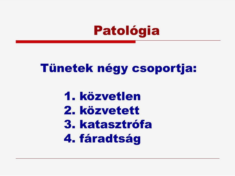 Patológia Tünetek négy csoportja: 1. közvetlen 2. közvetett 3. katasztrófa 4. fáradtság