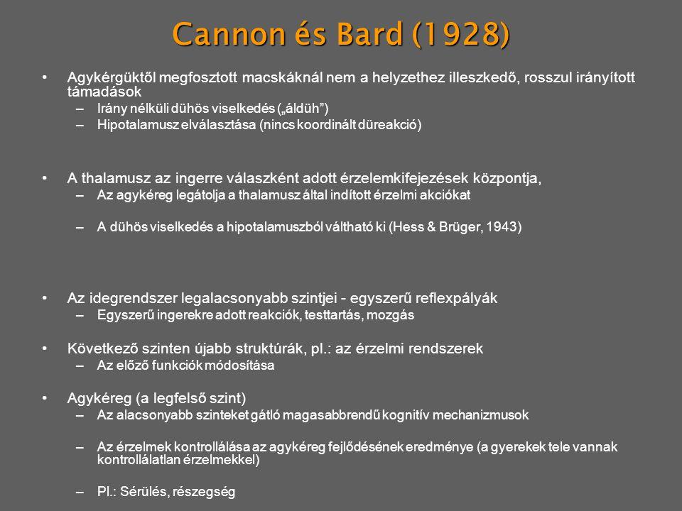 """Cannon és Bard (1928) Agykérgüktől megfosztott macskáknál nem a helyzethez illeszkedő, rosszul irányított támadások –Irány nélküli dühös viselkedés ("""""""