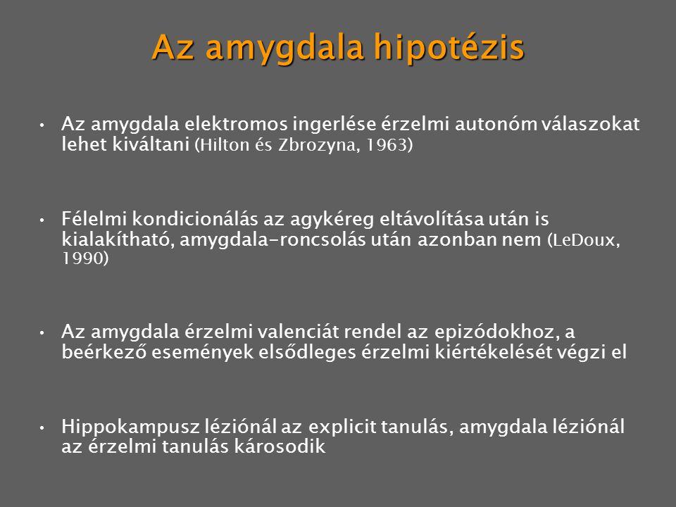 Az amygdala hipotézis Az amygdala elektromos ingerlése érzelmi autonóm válaszokat lehet kiváltani (Hilton és Zbrozyna, 1963) Félelmi kondicionálás az
