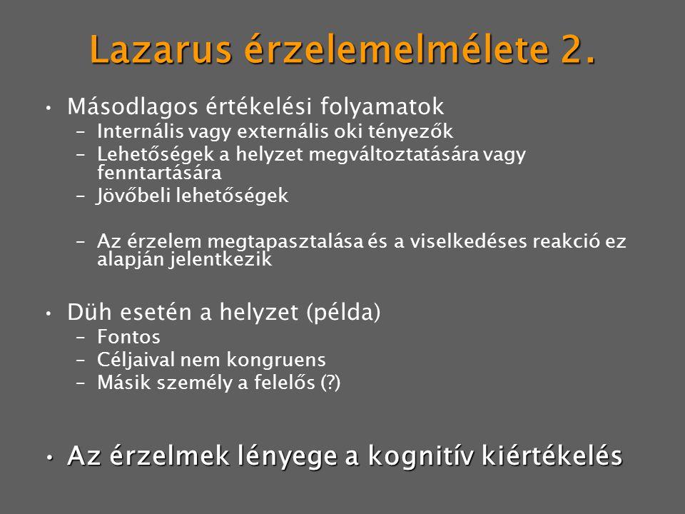 Lazarus érzelemelmélete 2. Másodlagos értékelési folyamatok –Internális vagy externális oki tényezők –Lehetőségek a helyzet megváltoztatására vagy fen