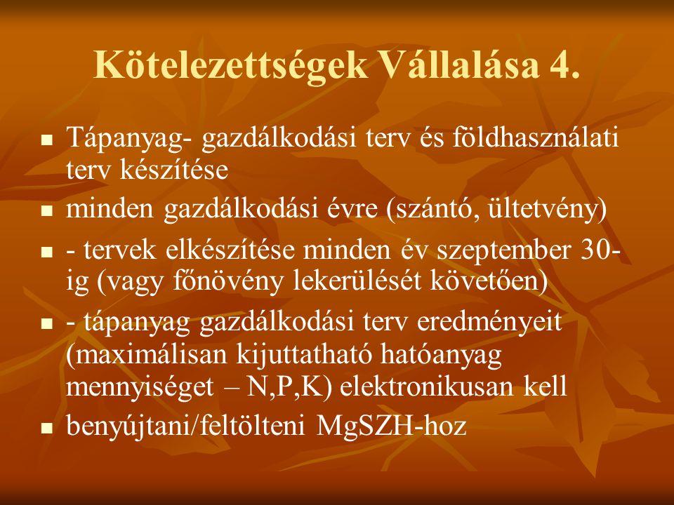 Kötelezettségek Vállalása 4.