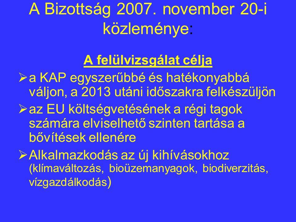 A Bizottság 2007.
