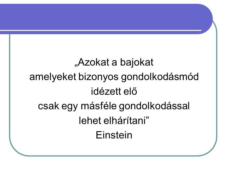 """""""Azokat a bajokat amelyeket bizonyos gondolkodásmód idézett elő csak egy másféle gondolkodással lehet elhárítani"""" Einstein"""