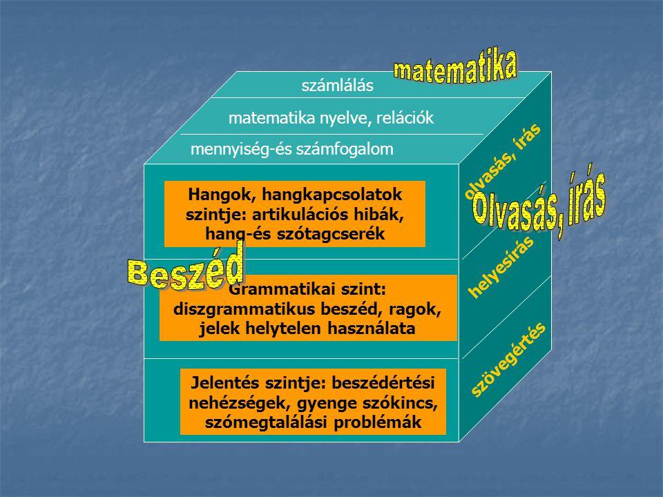 Hangok, hangkapcsolatok szintje: artikulációs hibák, hang-és szótagcserék Grammatikai szint: diszgrammatikus beszéd, ragok, jelek helytelen használata
