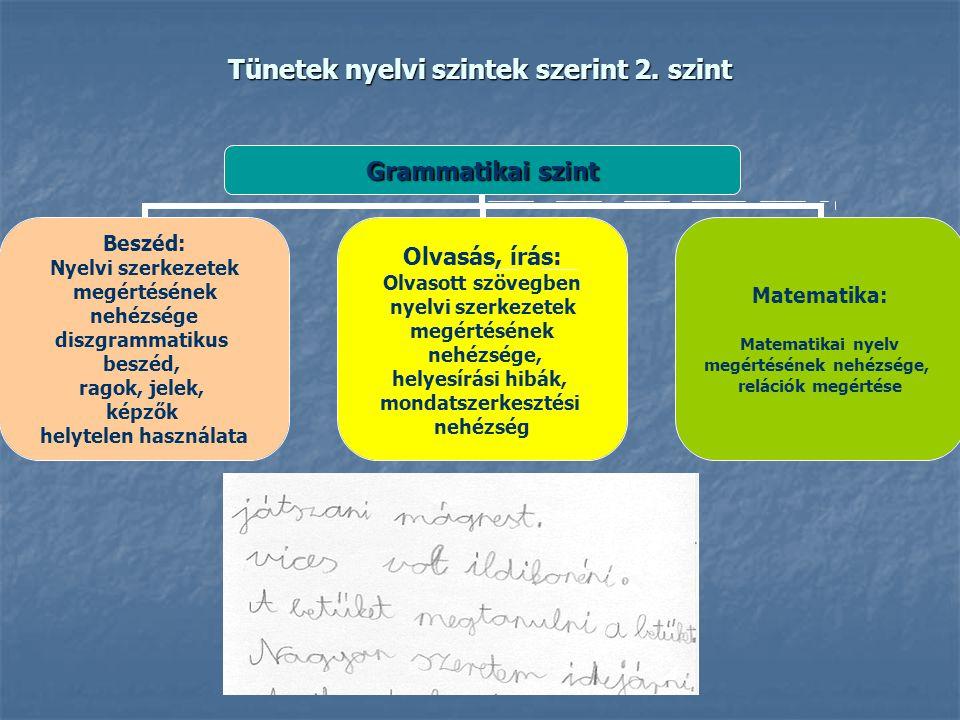 Tünetek nyelvi szintek szerint 2. szint Grammatikai szint Beszéd: Nyelvi szerkezetek megértésének nehézsége diszgrammatikus beszéd, ragok, jelek, képz