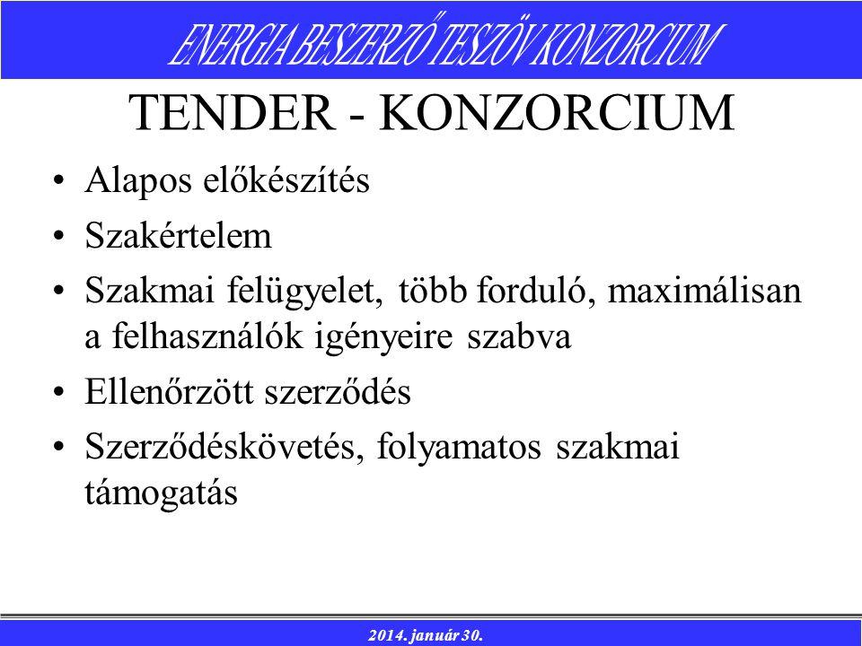 2014. január 30. TENDER - KONZORCIUM Alapos előkészítés Szakértelem Szakmai felügyelet, több forduló, maximálisan a felhasználók igényeire szabva Elle