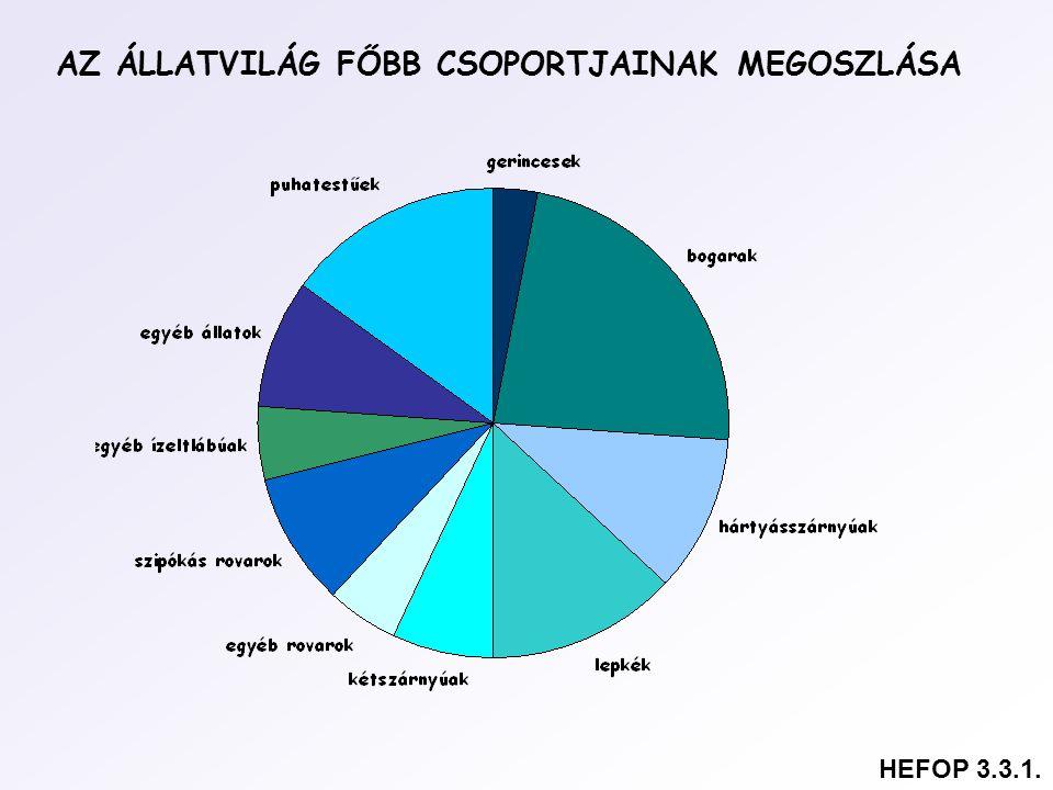 AZ ÁLLATVILÁG FŐBB CSOPORTJAINAK MEGOSZLÁSA HEFOP 3.3.1.