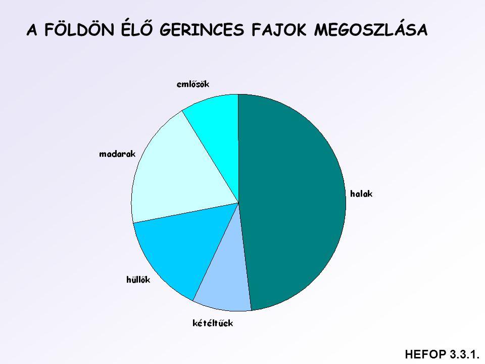 A FÖLDÖN ÉLŐ GERINCES FAJOK MEGOSZLÁSA HEFOP 3.3.1.
