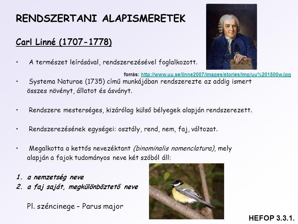 RENDSZERTANI ALAPISMERETEK Carl Linné (1707-1778) A természet leírásával, rendszerezésével foglalkozott. Systema Naturae (1735) című munkájában rendsz