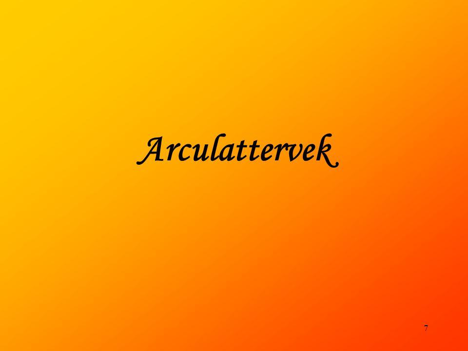 Arculattervek 7