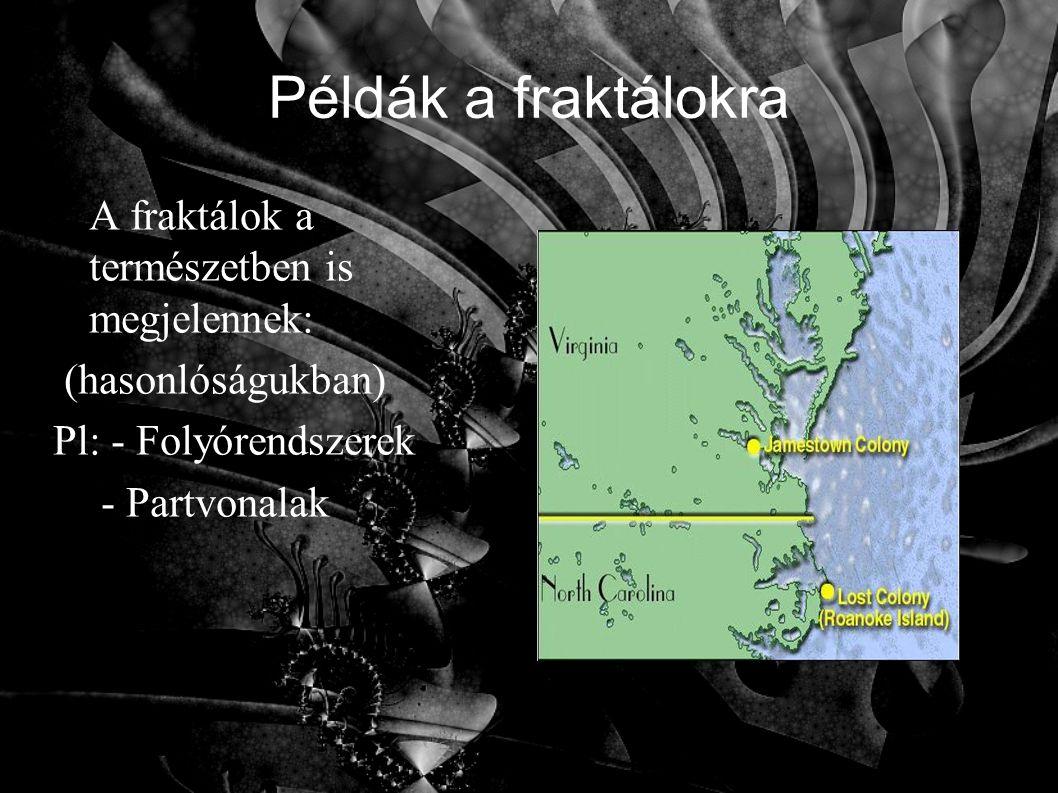 Példák a fraktálokra A fraktálok a természetben is megjelennek: (hasonlóságukban) Pl: - Folyórendszerek - Partvonalak