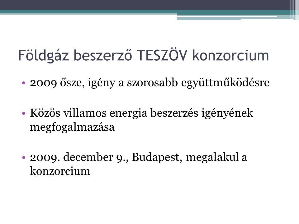 Földgáz beszerző TESZÖV konzorcium 2009 ősze, igény a szorosabb együttműködésre Közös villamos energia beszerzés igényének megfogalmazása 2009. decemb