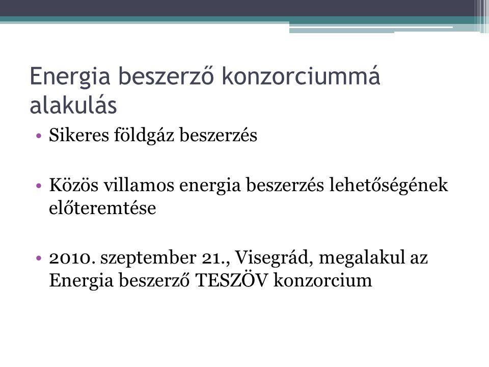 Energia beszerző konzorciummá alakulás Sikeres földgáz beszerzés Közös villamos energia beszerzés lehetőségének előteremtése 2010. szeptember 21., Vis