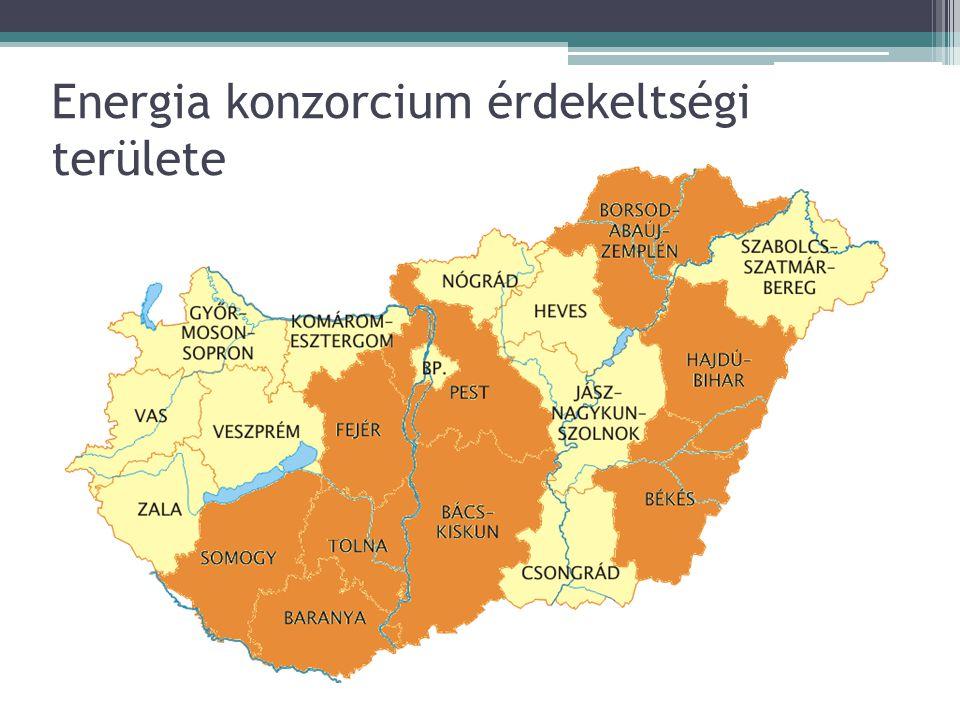 Konzorcium vezetősége Összetétele: ▫minden alapító TESZÖV képviseletébe 1 fő ▫minden további 3 millió m 3 gázigény, illetve 5 GWh villamos energia igény után TESZÖVönként további 1-1 fő ▫a konzorcium képviseletét ellátó (kapcsolattartó) megyei TESZÖV vezetője a mennyiségek az előző év december 31-ei állapotok szerint értendők
