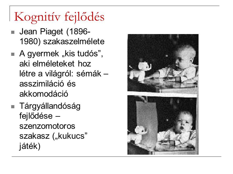 A kognitív fejlődés szakaszai Piaget szerint Szenzomotoros (születés- 2.
