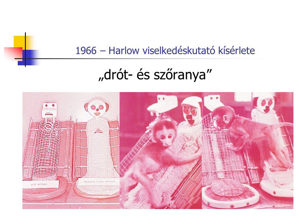 """1966 – Harlow viselkedéskutató kísérlete """"drót- és szőranya"""""""