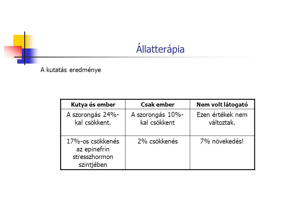 Állatterápia