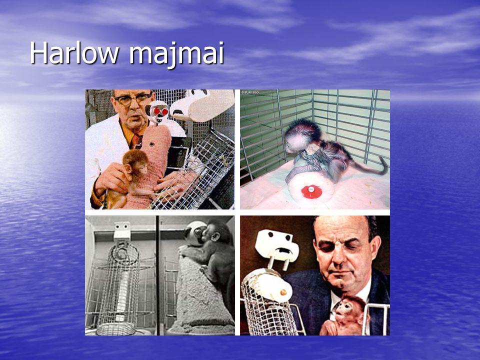 Harlow majmai