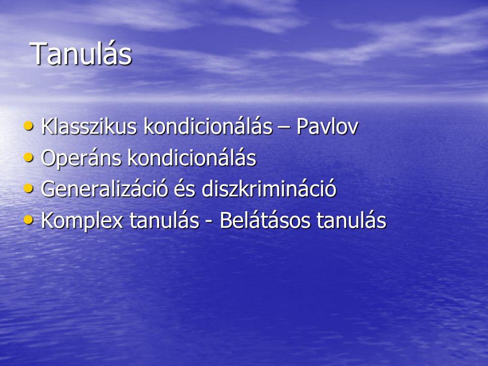Tanulás Klasszikus kondicionálás – Pavlov Klasszikus kondicionálás – Pavlov Operáns kondicionálás Operáns kondicionálás Generalizáció és diszkrimináci
