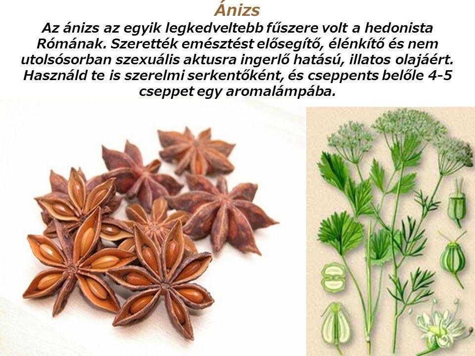 Szerecsendió Európában a 16. századtól kedvelt fűszer, főként izgató hatása miatt. Használhatod fűszerként is sütemények vagy egyéb ételek ízesítésére