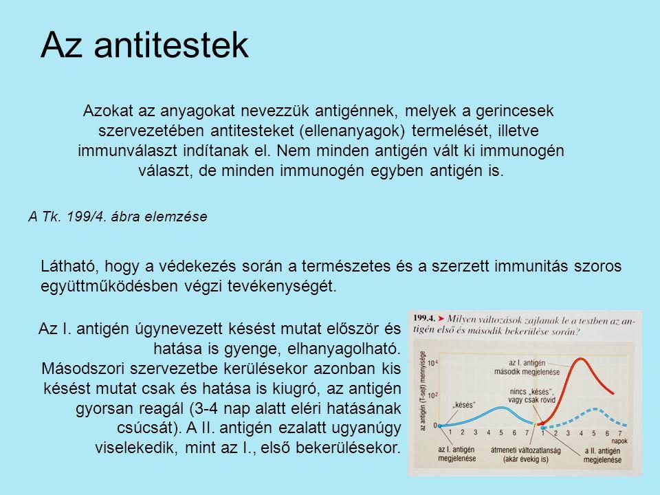 Azokat az anyagokat nevezzük antigénnek, melyek a gerincesek szervezetében antitesteket (ellenanyagok) termelését, illetve immunválaszt indítanak el.