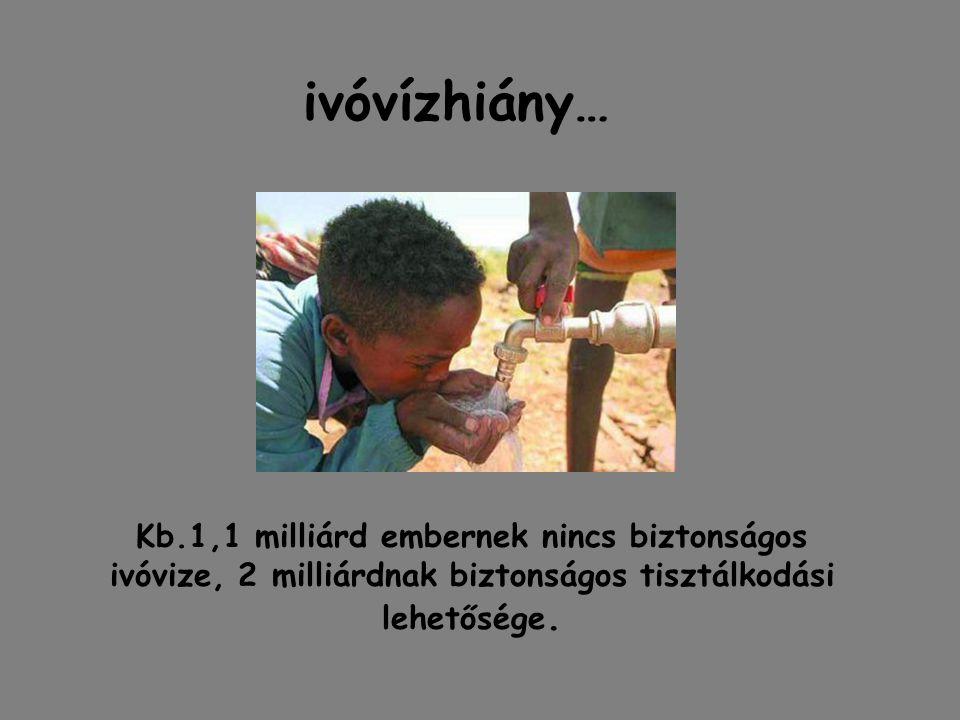 ivóvízhiány… Kb.1,1 milliárd embernek nincs biztonságos ivóvize, 2 milliárdnak biztonságos tisztálkodási lehetősége.