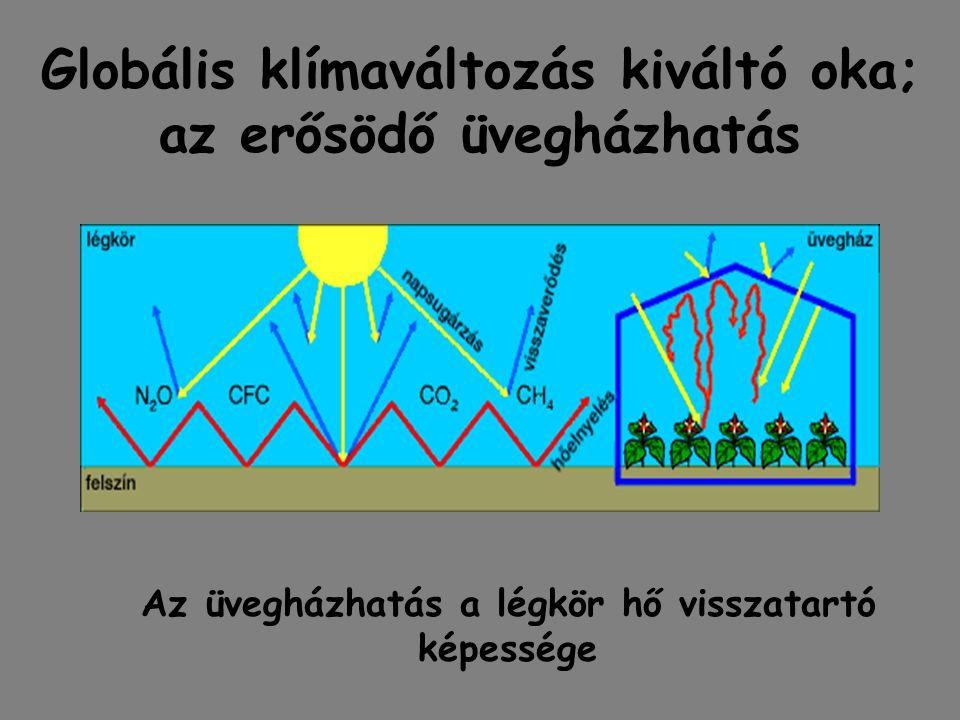 Globális klímaváltozás kiváltó oka; az erősödő üvegházhatás Az üvegházhatás a légkör hő visszatartó képessége