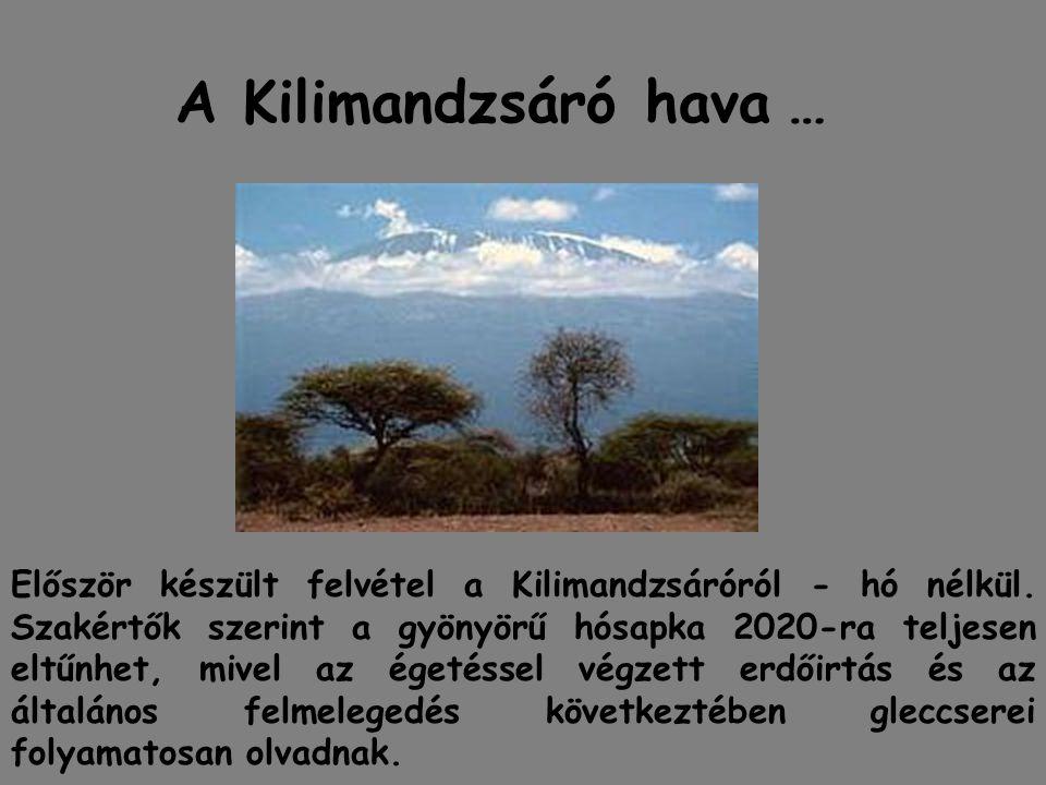 A Kilimandzsáró hava … Először készült felvétel a Kilimandzsáróról - hó nélkül. Szakértők szerint a gyönyörű hósapka 2020-ra teljesen eltűnhet, mivel