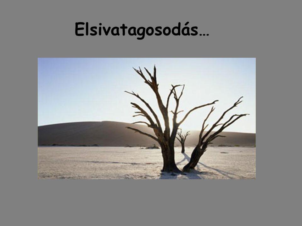 Elsivatagosodás…