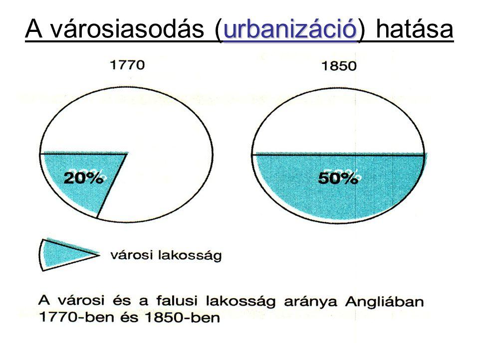urbanizáció A városiasodás (urbanizáció) hatása