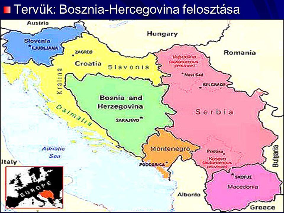 A tartományt megfelezték volna, az iszlám vallású bosnyákok beolvasztásával Azonban a horvátok, és a szlovének is megijedtek Milosevic hatalmi törekvéseitől Ezért 1991 júniusában kikiáltották függetlenségüket A horvátországi szerbek azonban ezt nem akarták, ellenálltak – kikiáltották a Krajinai Szerb Köztársaságot