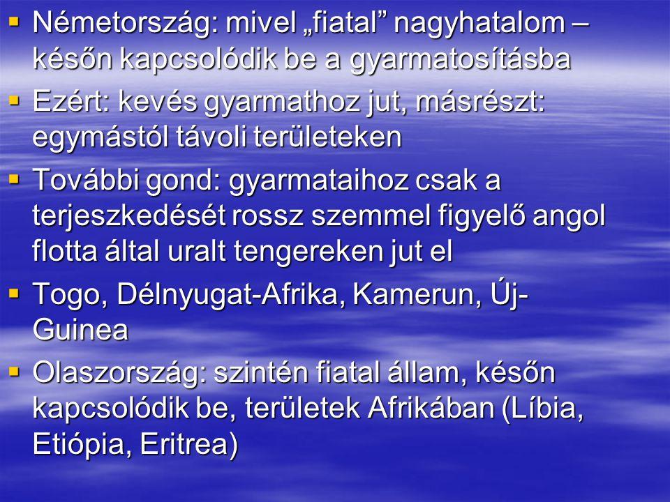 Európa méretéhez és jelentőségéhez képest nagy gyarmathatalom Hollandia és Belgium (Ázsia, Óceánia)  Oroszország: saját területét gyarapítja – kijut egészen a Csendes-óceánig (Vlagyivosztok, 1860)  Gyarmatok miatt nagyhatalmak közti konfliktusok  Anglia – Franciaország: Észak-Afrika  Anglia – Oroszország: Ázsia (Afganisztán)  Németország – Anglia: Afrika, flottafejlesztés  Olaszország – Franciaország: Észak-Afrika